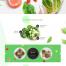 5款面试作品绿色有机蔬菜食品餐饮水果品牌企业官网站网页UI海报设计模版素材